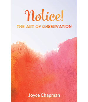 Notice! The Art of Observation